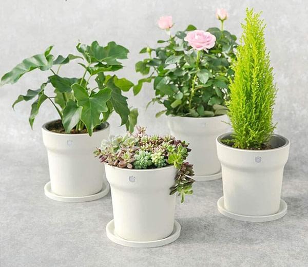 Smart Plant Pot with Nutrient Sensor