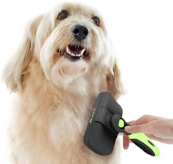 Self-Cleaning Slicker Brush for Dog or Cat