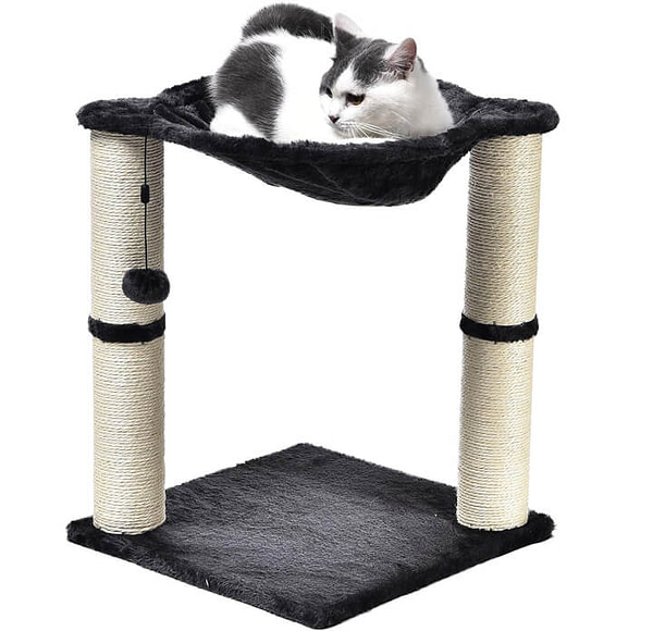 Scratching Post and Hammock to Satisfy Your Cat's Urge to Scratch & Climb