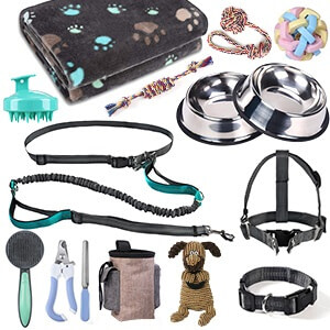 Complete Puppy Starter Kit for New Dog Owner