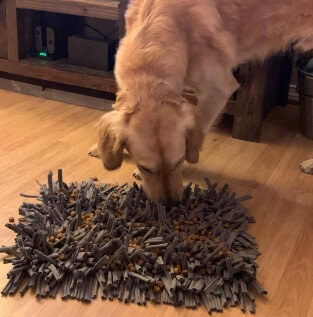 Dog Wooly Snuffle Feeding Mat to Encourage Natural Foraging Skills