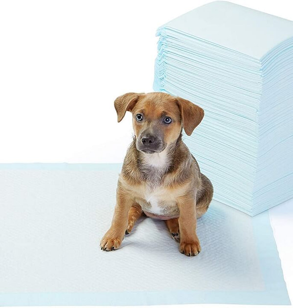 Super-Absorbent & Leak-Proof Dog Potty Training Pads